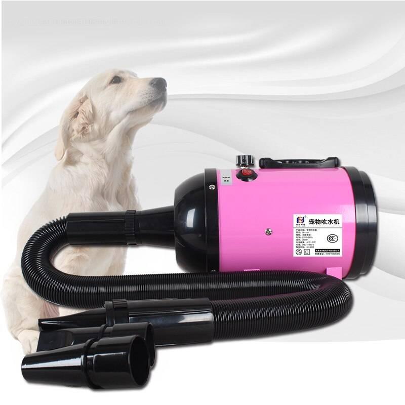 Покупка компрессора для собак на ALIEXPRESS: секреты и подводные камни