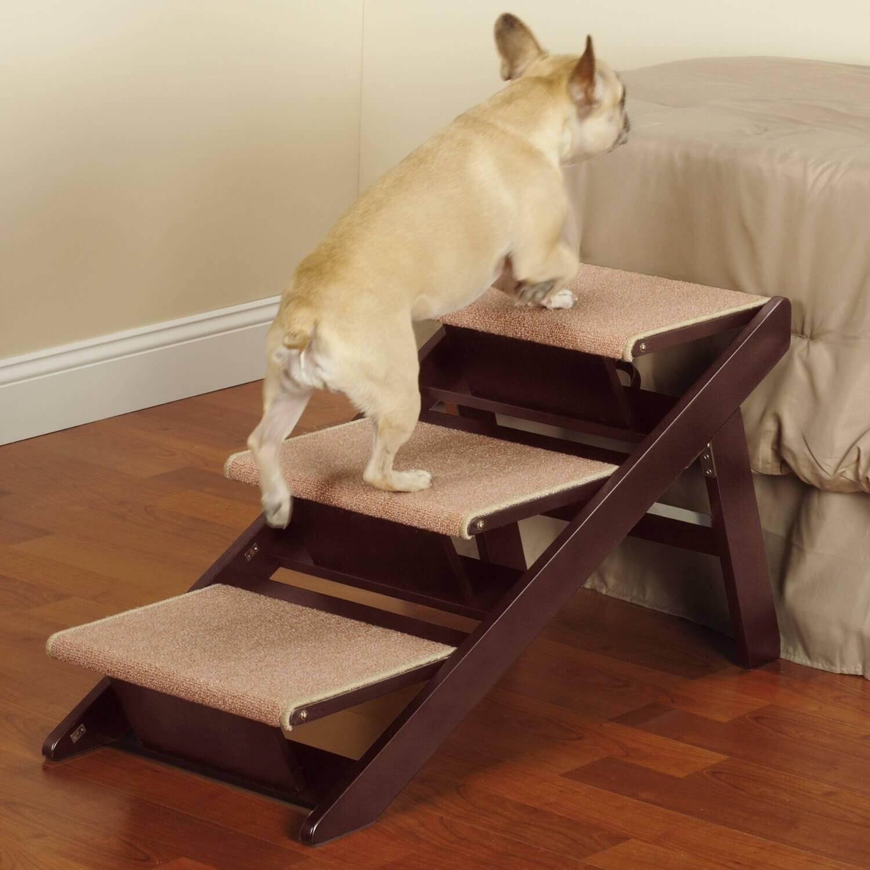Лесенка для собак своими руками как сделать из дерева