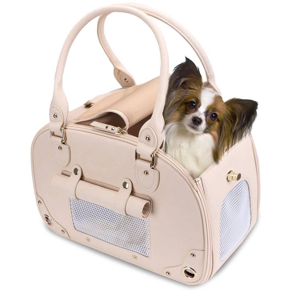 Делимся опытом перевозка собаки в самолете, это большая проблема