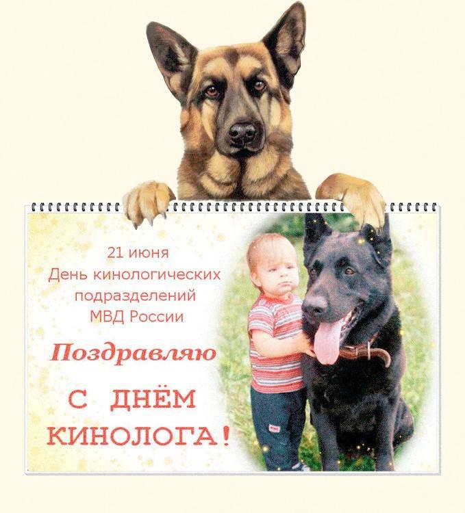 День ветеринарного работника в 2021 году: какого числа отмечают, дата и история праздника