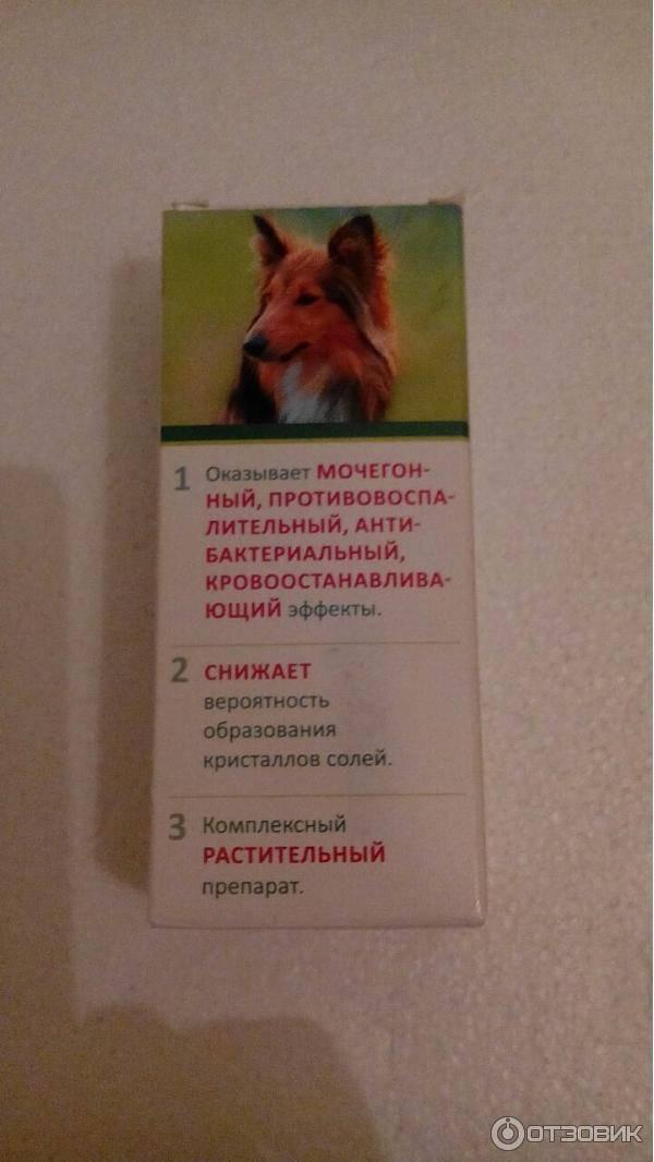 Уролекс для собак: показания и инструкция по применению, отзывы, цена