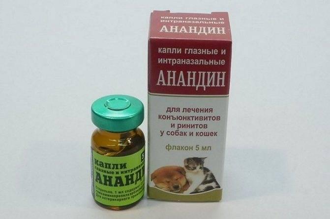 Максидин для кошек – назначение, инструкция, отзывы