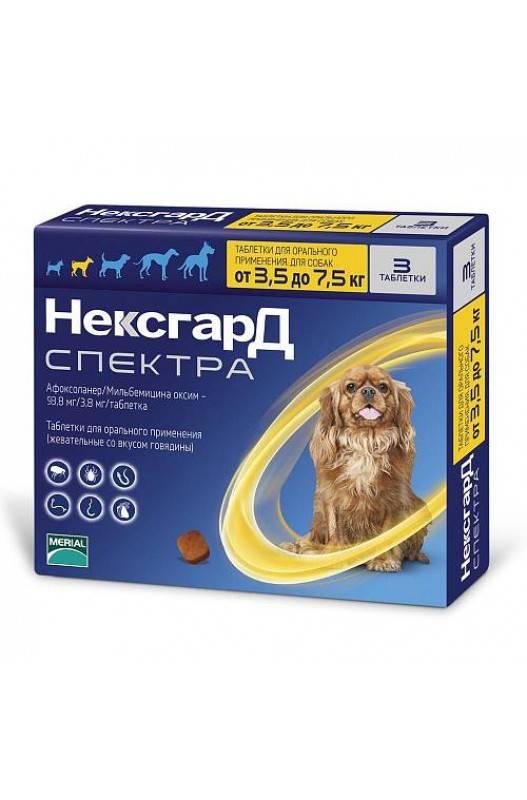 Нексгард спектра для собак – инструкция по применению таблеток от блох, клещей и глистов. фронтлайн нексгард спектра для собак: инструкция