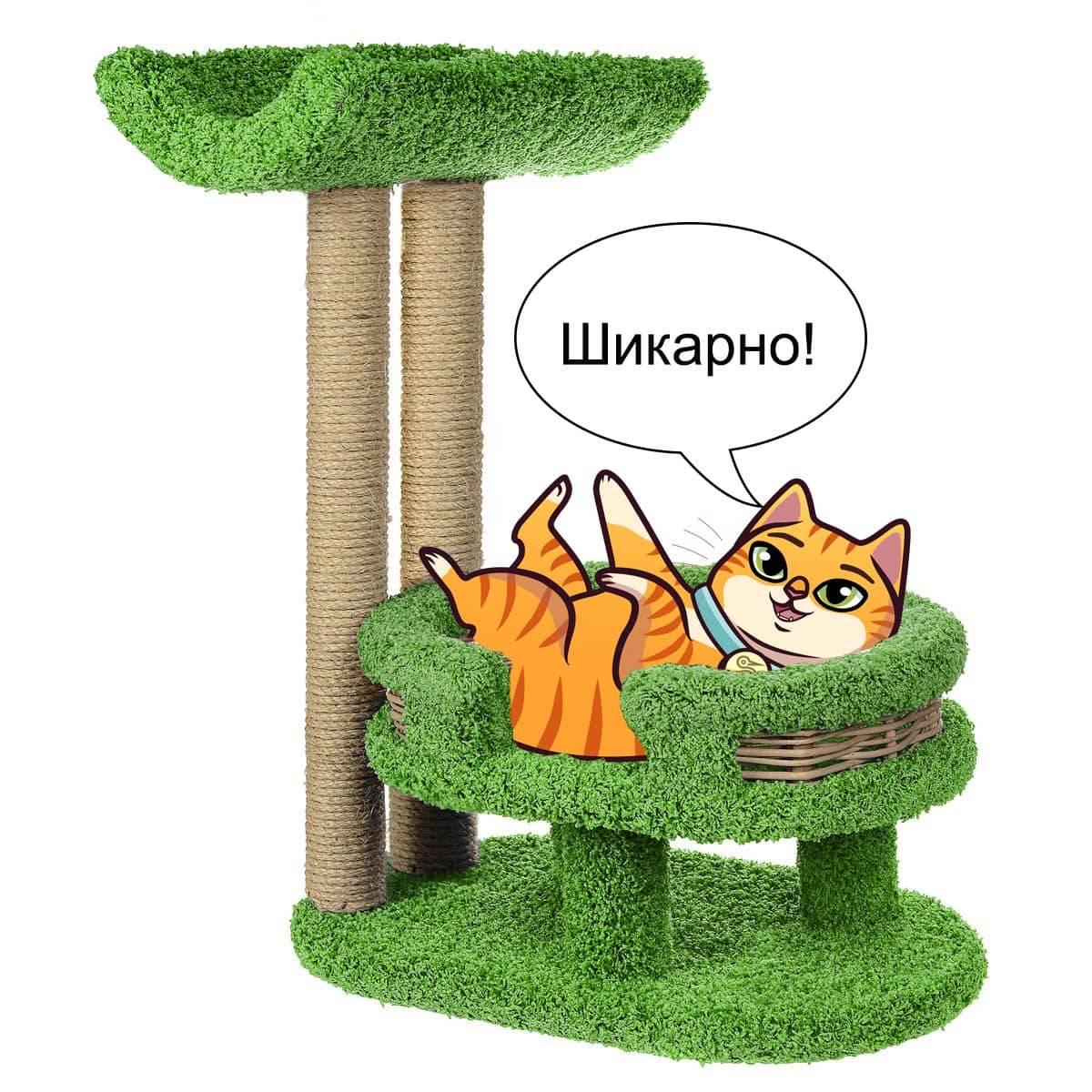 Как приучить котенка к когтеточке – pet-mir.ru