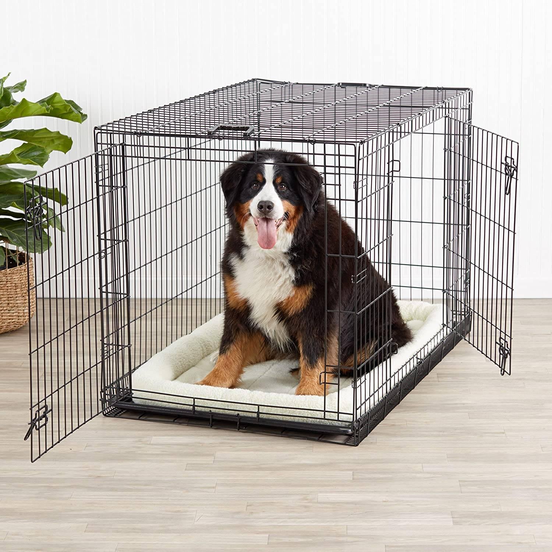 Описание клеток для собак и инструкция по их изготовлению своими руками