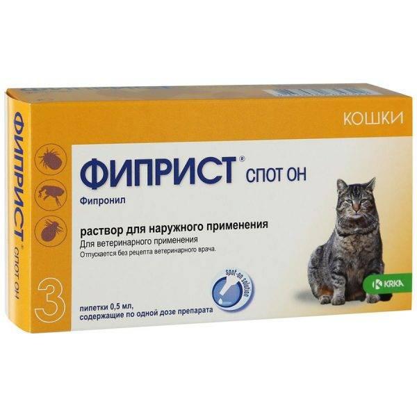 Коронавирус кошек (вирусный перитонит, fip)