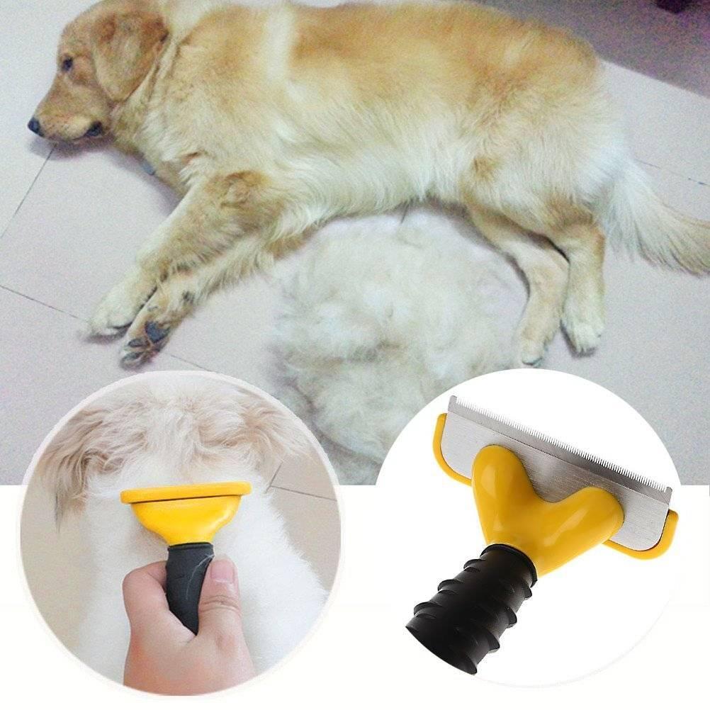 Фурминатор: правила использования и критерии выбора расчески для собак