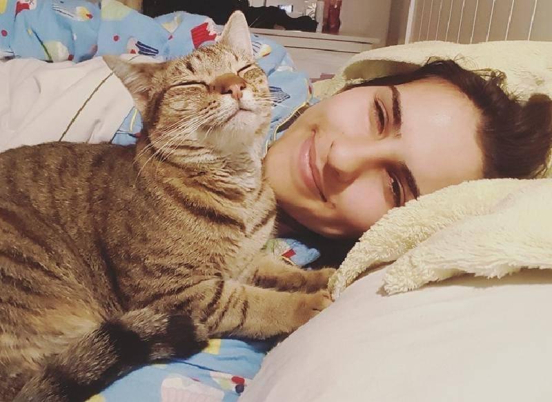 7 признаков, что у вас дома довольная и счастливая кошка