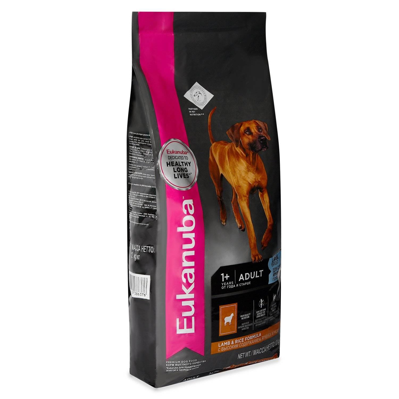 Сухой корм для собак эукануба - обзор состава и анализ
