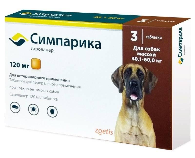 Симпарика 40 мг от блох и клещей для собак 10-20 кг, упаковка 3 таблетки купить, цена и отзывы в зоомагазине beewell
