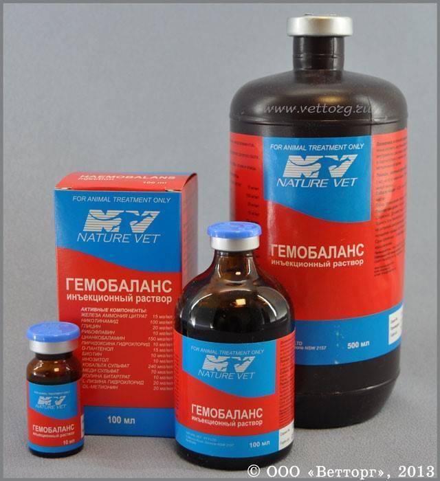 Гемобаланс для кошек: описание препарата, форма выпуска, инструкция по применению, отзывы, меры предосторожности