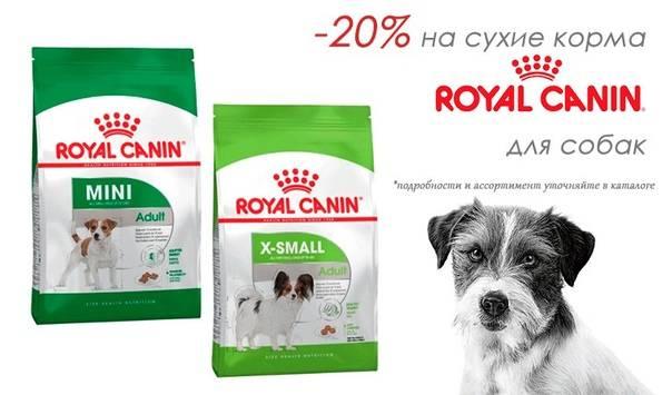 Подробная информация о гипоаллергенном корме royal canin (роял канин)
