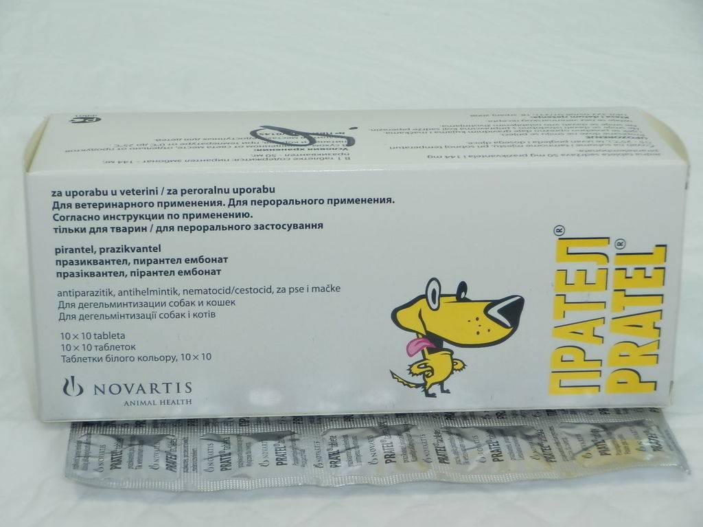 Прател (pratel), таблетки против глистов
