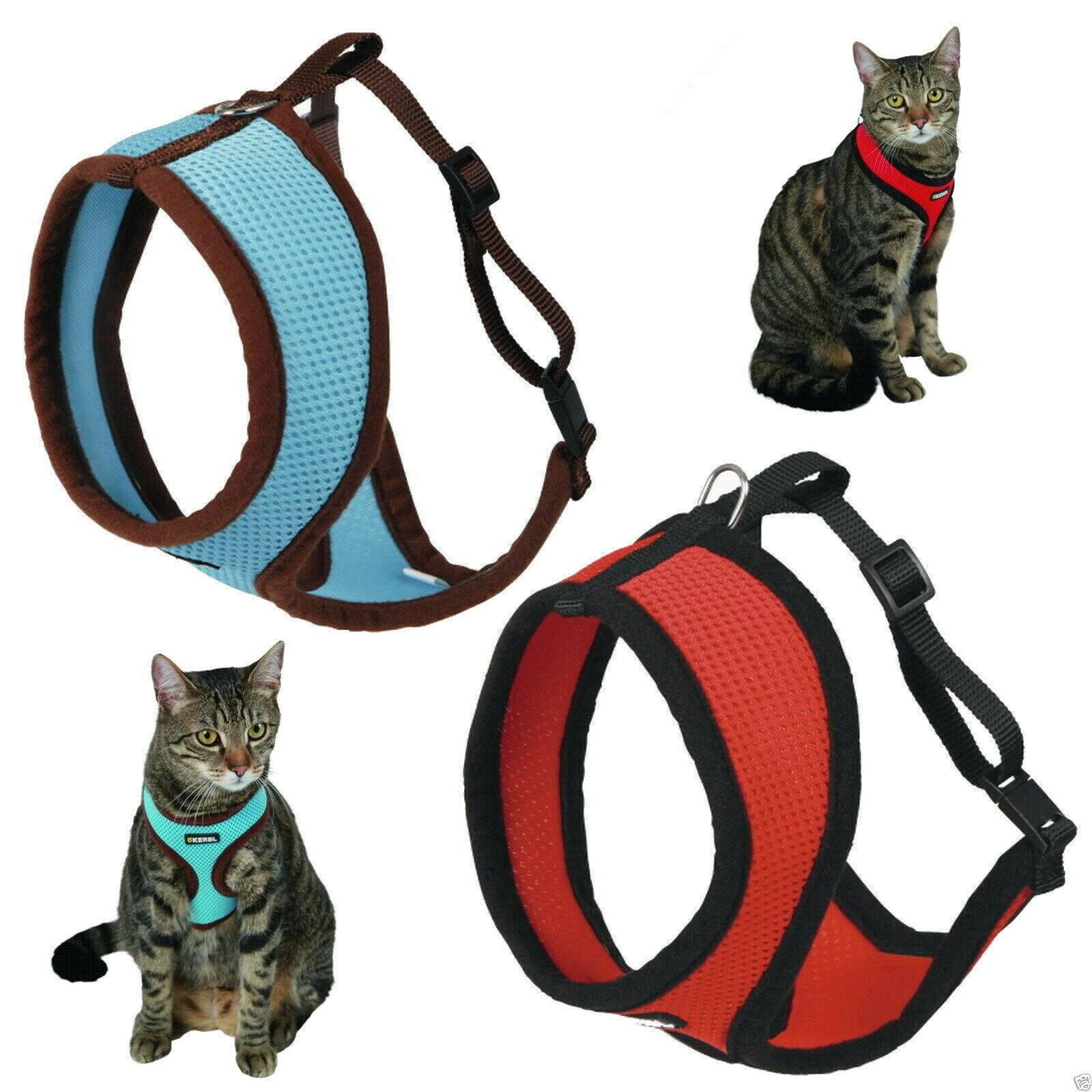 Примеры шлеек для кошки: варианты как сшить в домашних условиях, стоимость поводка