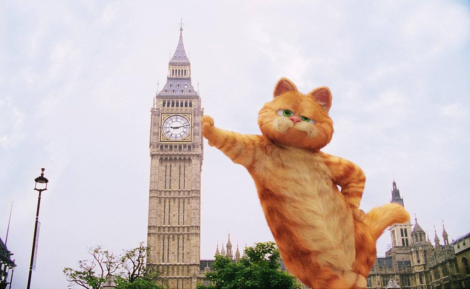 Путешествие 2 кошек из амстердама в лондон в кошкомобиле
