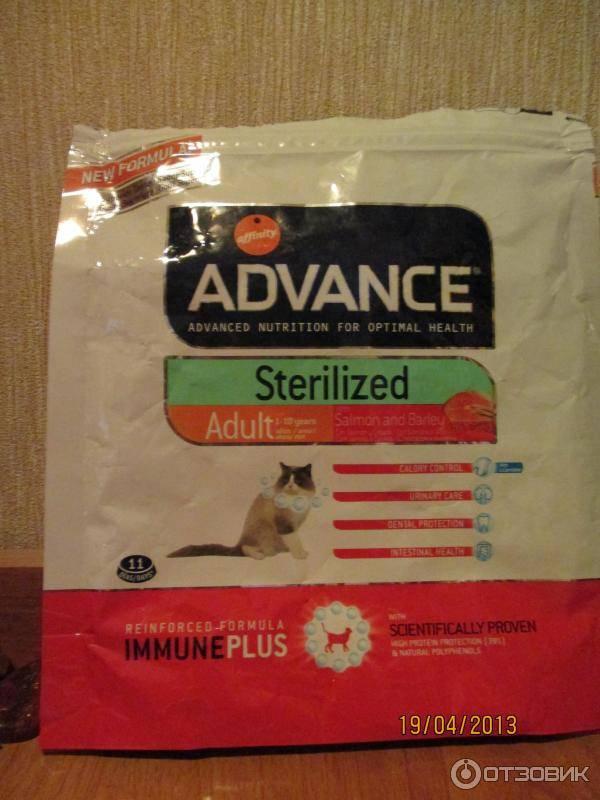 Корм для собак advance: отзывы, разбор состава, цена - петобзор