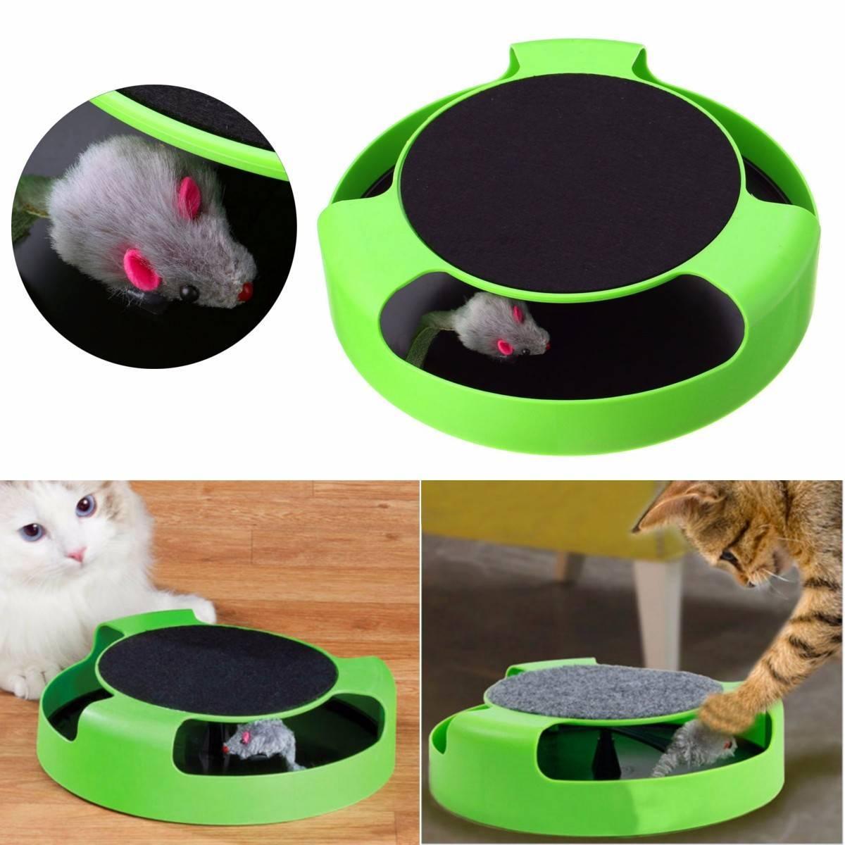Игрушки для кошек и котят [как выбрать, топ 16 игрушек] - kotiko.ru