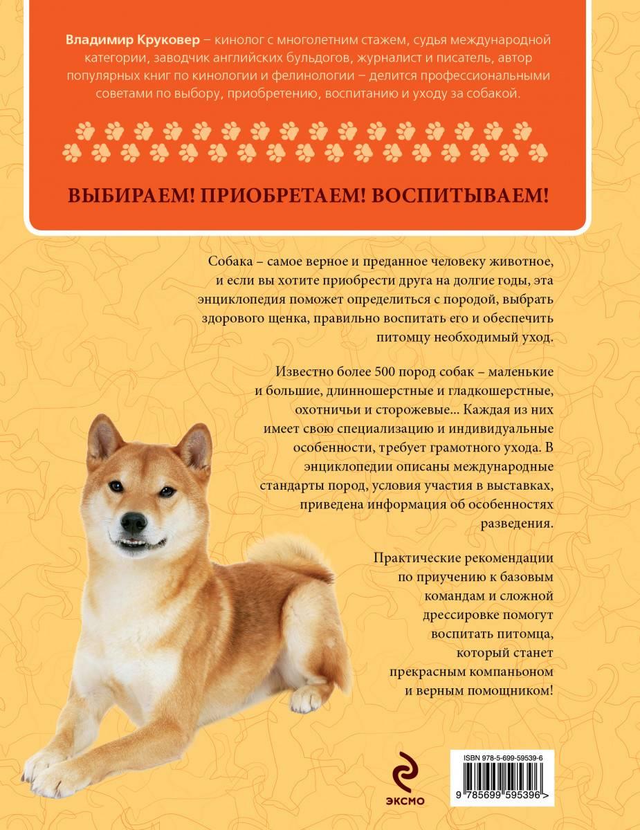 Ховаварт: порода собак из германии, фото и цена, содержание и уход