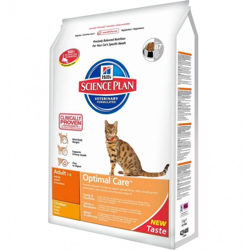 Корм для кошек: что должно быть в составе? | hill's pet