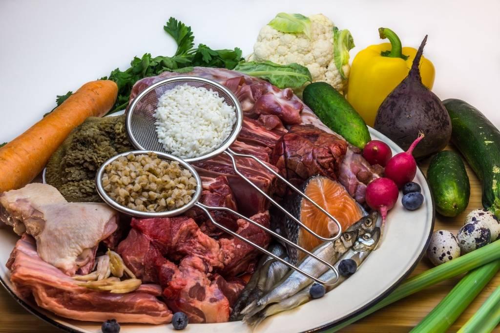 Чем лучше кормить собаку: плюсы и минусы кормления готовыми кормами, правила выбора сухого корма, примеры меню при кормлении натуральными продуктами