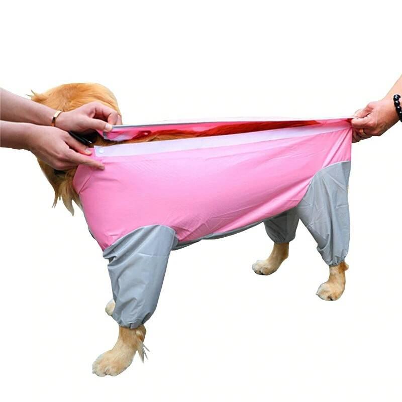 Дождевик для собак мелких пород: попона, комбинезон, плащ