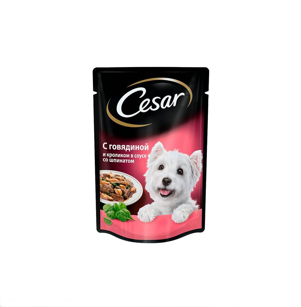 Корм для собак cesar (цезарь)