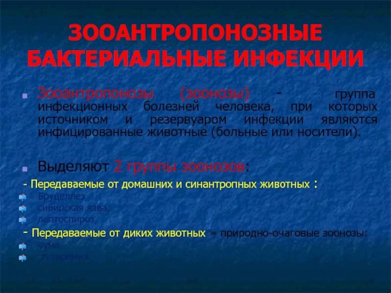 Зооантропонозные бактериальные инфекции презентация, доклад