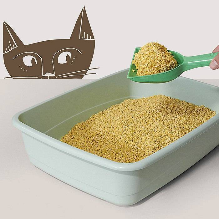 Как выбрать лоток для кошки