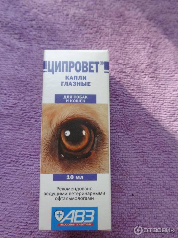 Отзывы глазные капли авз бриллиантовые глаза diamond eyes » нашемнение - сайт отзывов обо всем