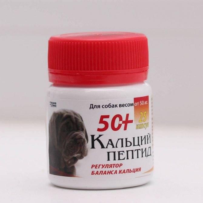 Витамины для собак а, в, с, д, е, н значения, свойства и потребности у пород