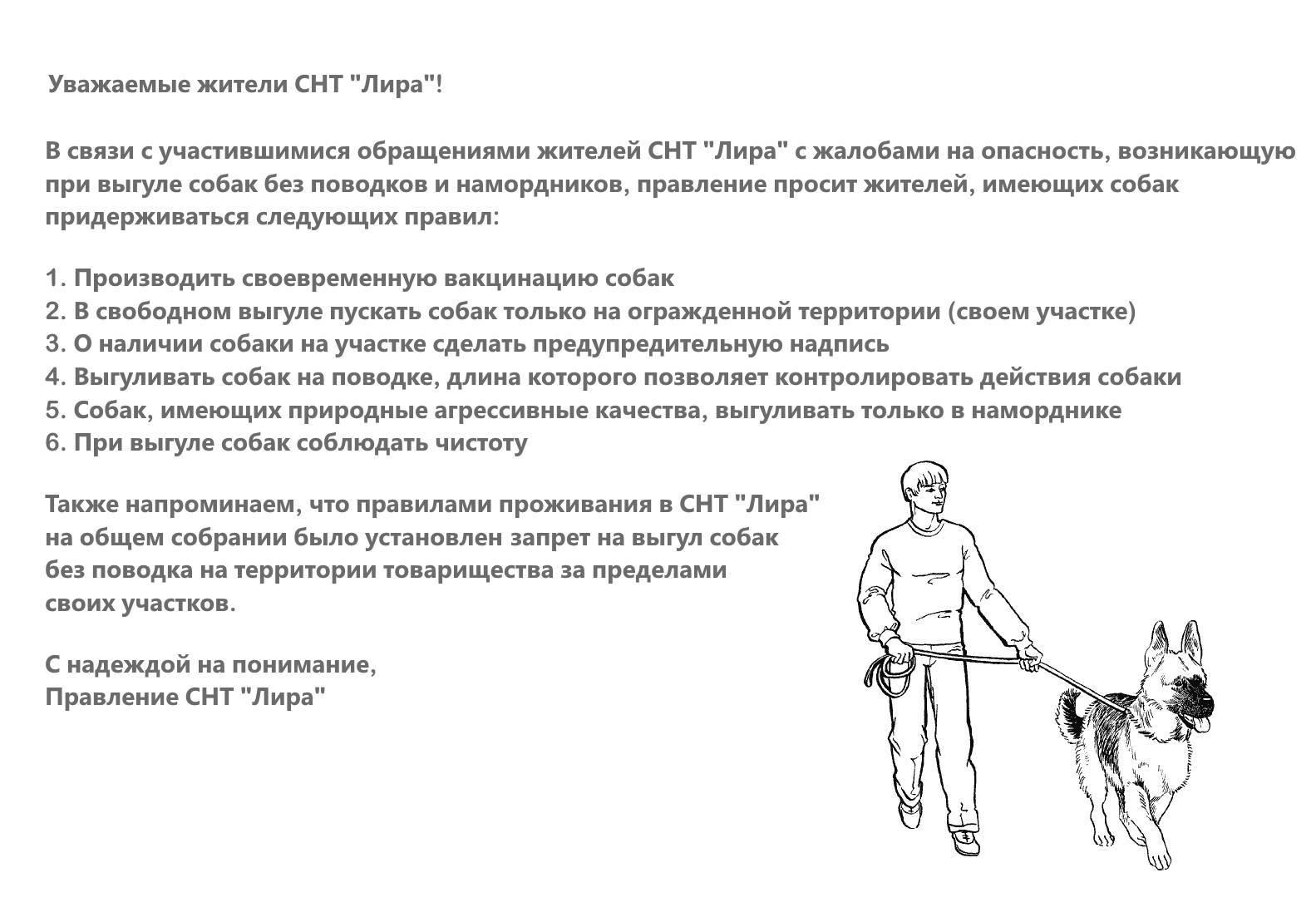 Правила содержания собак в частном секторе — вопросы по теме жилищное право