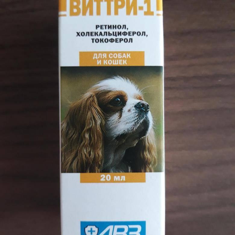 Виттри-1,2,3 (витамины) для кошек и собак | отзывы о применении препаратов для животных от ветеринаров и заводчиков