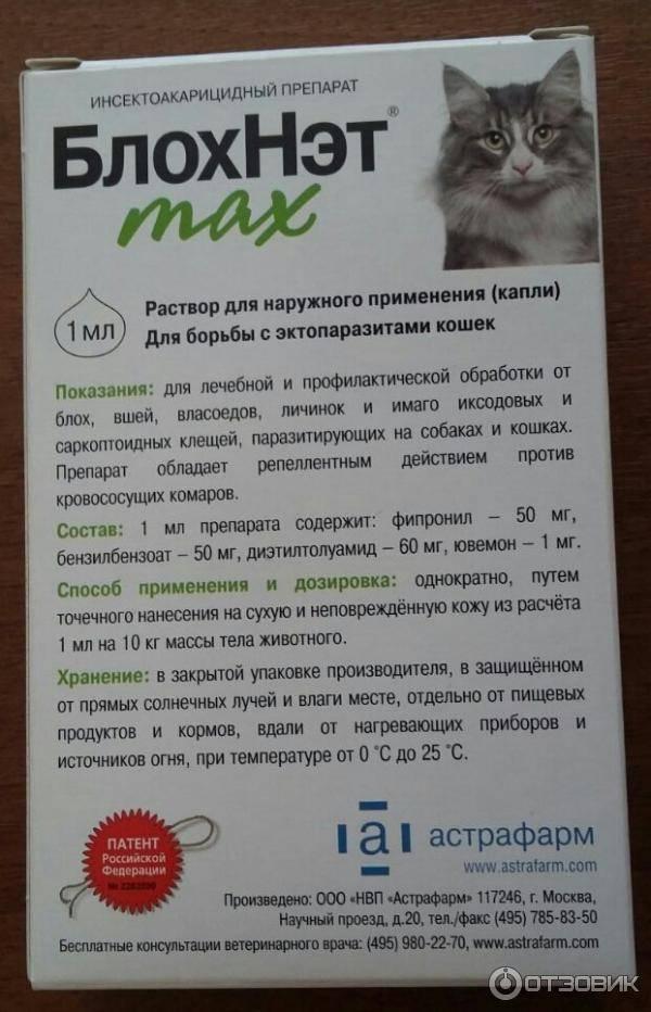 Эффективные средства от блох для кошек: спреи, препараты, уколы и капли