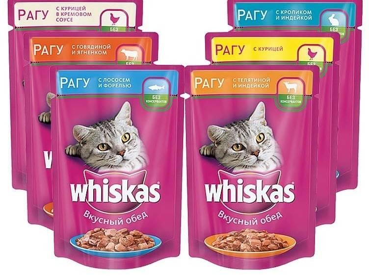 Корм для кошек фрискис: виды корма, состав и отзыв ветеринара