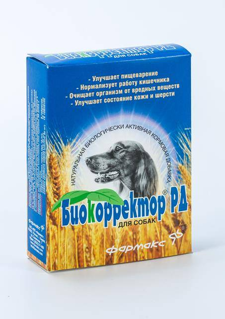Пробиотики в корме для собак и кошек: ветеринарные дозы для здоровья кишечника, лучший пробиотик для собак