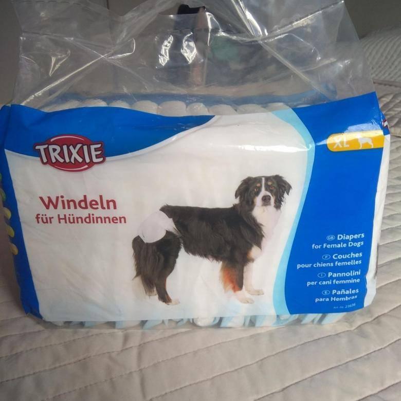 Памперсы для собак: как подобрать размер, приучение питомца к памперсу