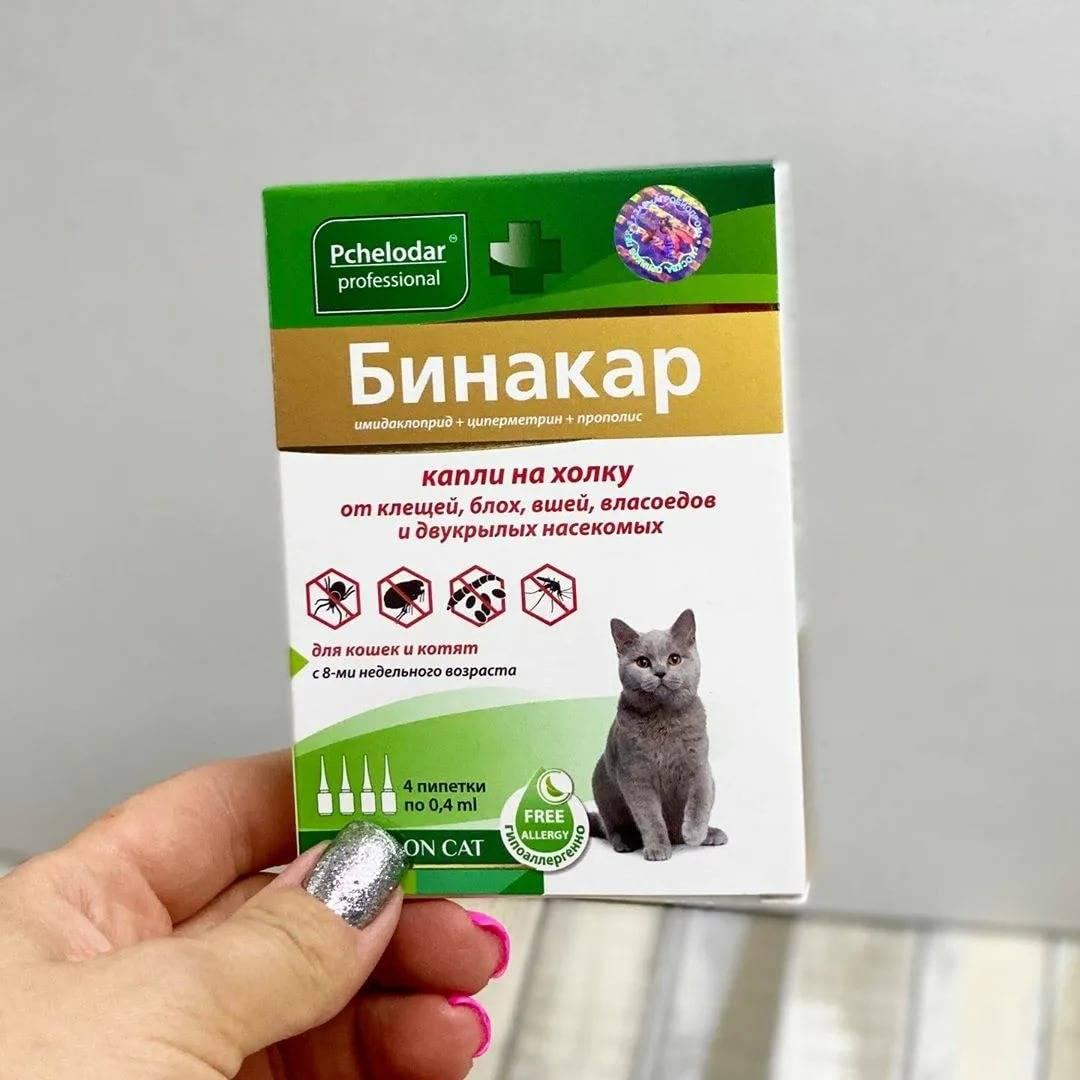 Лекарство для кошек от блох и глистов