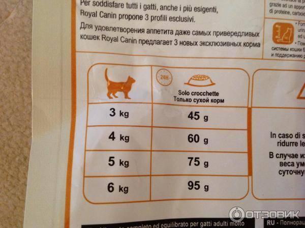 Можно ли кормить стерилизованную кошку обычным кормом? рейтинг кормов для стерилизованных кошек
