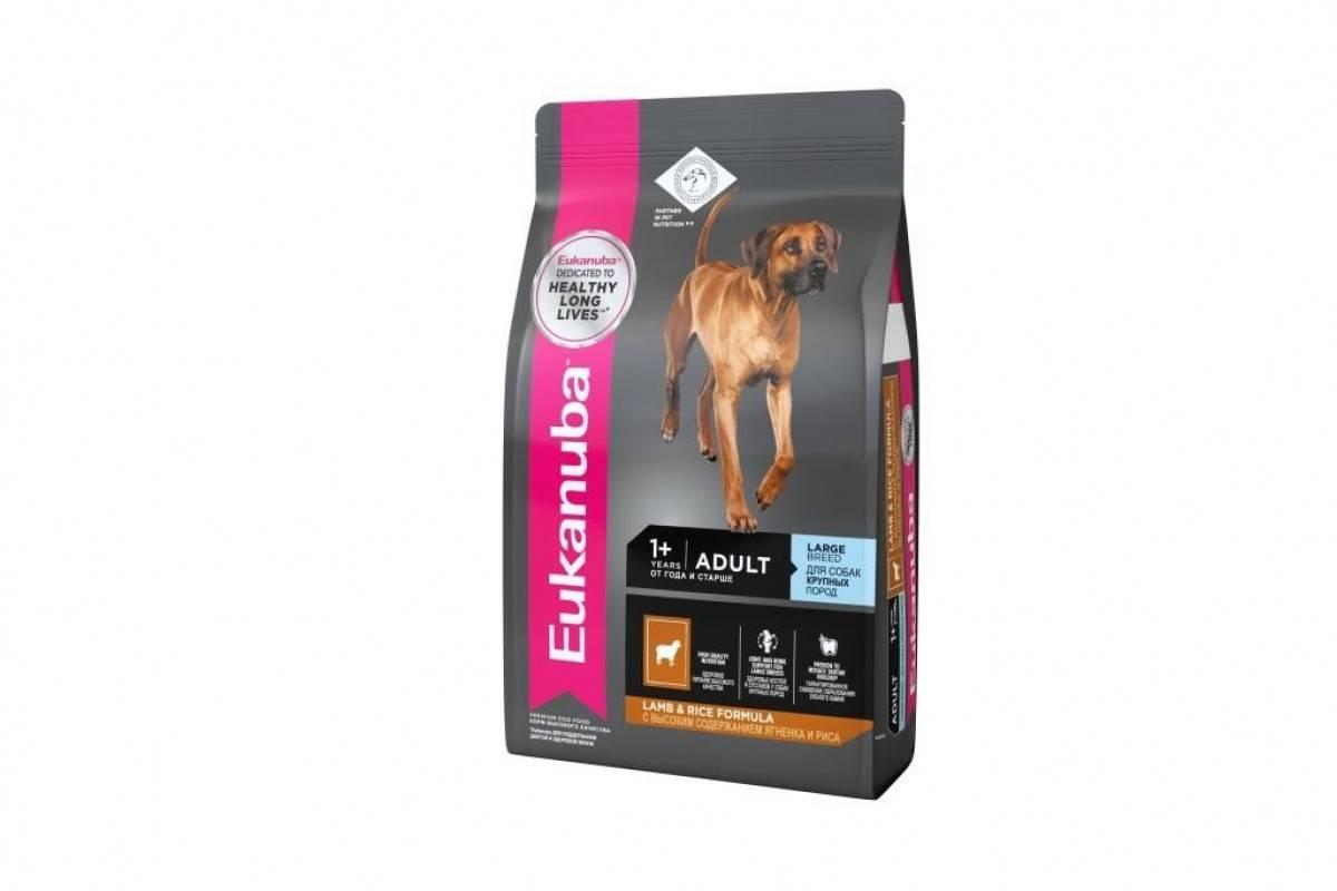 Eukanuba корм для собак - виды, отзывы, цена и где купить