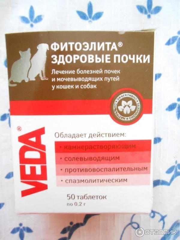 Фитоэлита здоровые почки (таблетки) для кошек и собак | отзывы о применении препаратов для животных от ветеринаров и заводчиков