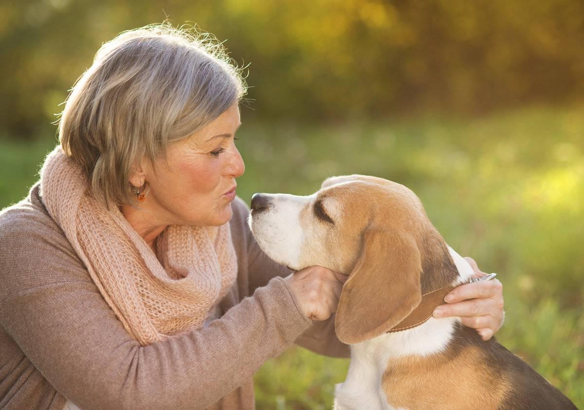 Как собаки улучшают здоровье своих хозяев? :: polismed.com