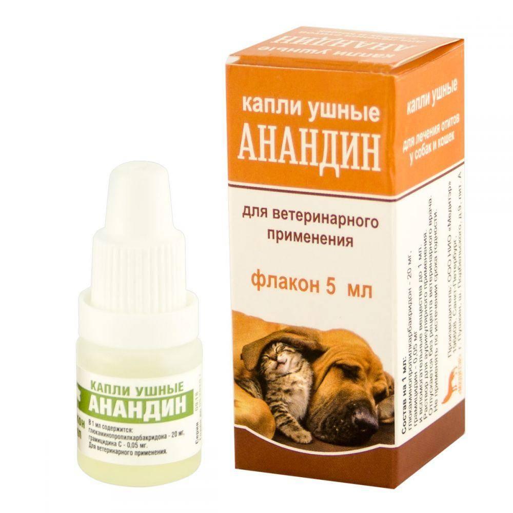 Анандин для собак: инструкция и показания к применению, отзывы, цена