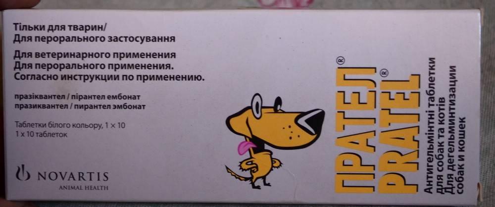 ᐉ прател для собак инструкция по применению: протел от глистов - zooshop-76.ru