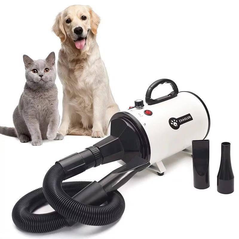 Топ-7 фенов-компрессоров для сушки собак и кошек