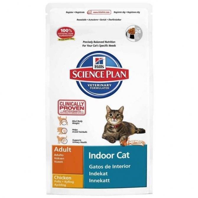 Как вывести шерсть из желудка кошки?