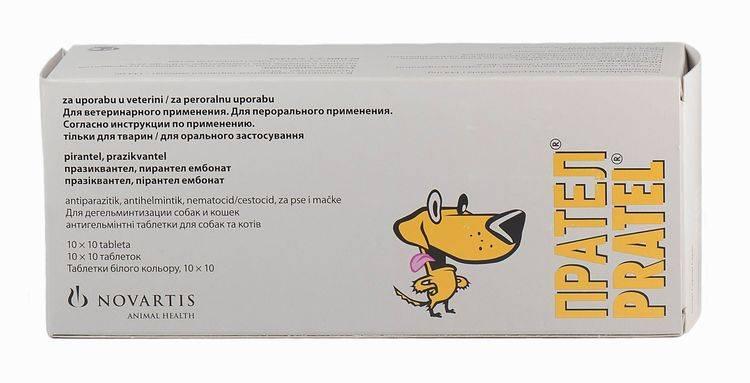 Интерспектин-l для кошек: инструкция и показания к применению, отзывы, цена