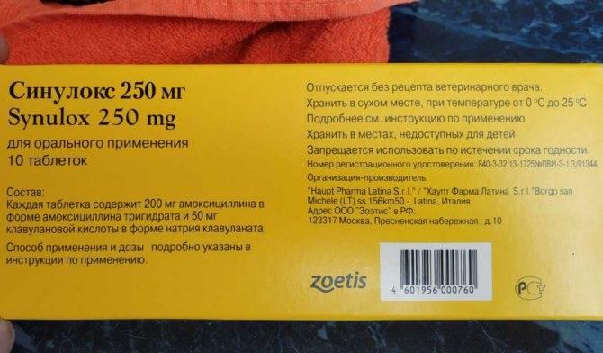 Синулокс 50 250 500 антибиотик для кошек и собак инструкция по применению лекарства  синулокса суспензии в ветеринарии дозировка отзывы