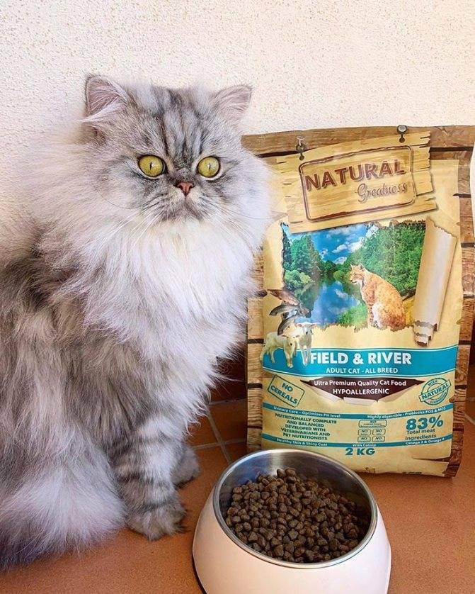 Обзор ассортимента и оценка состава корма для кошек «гуаби»