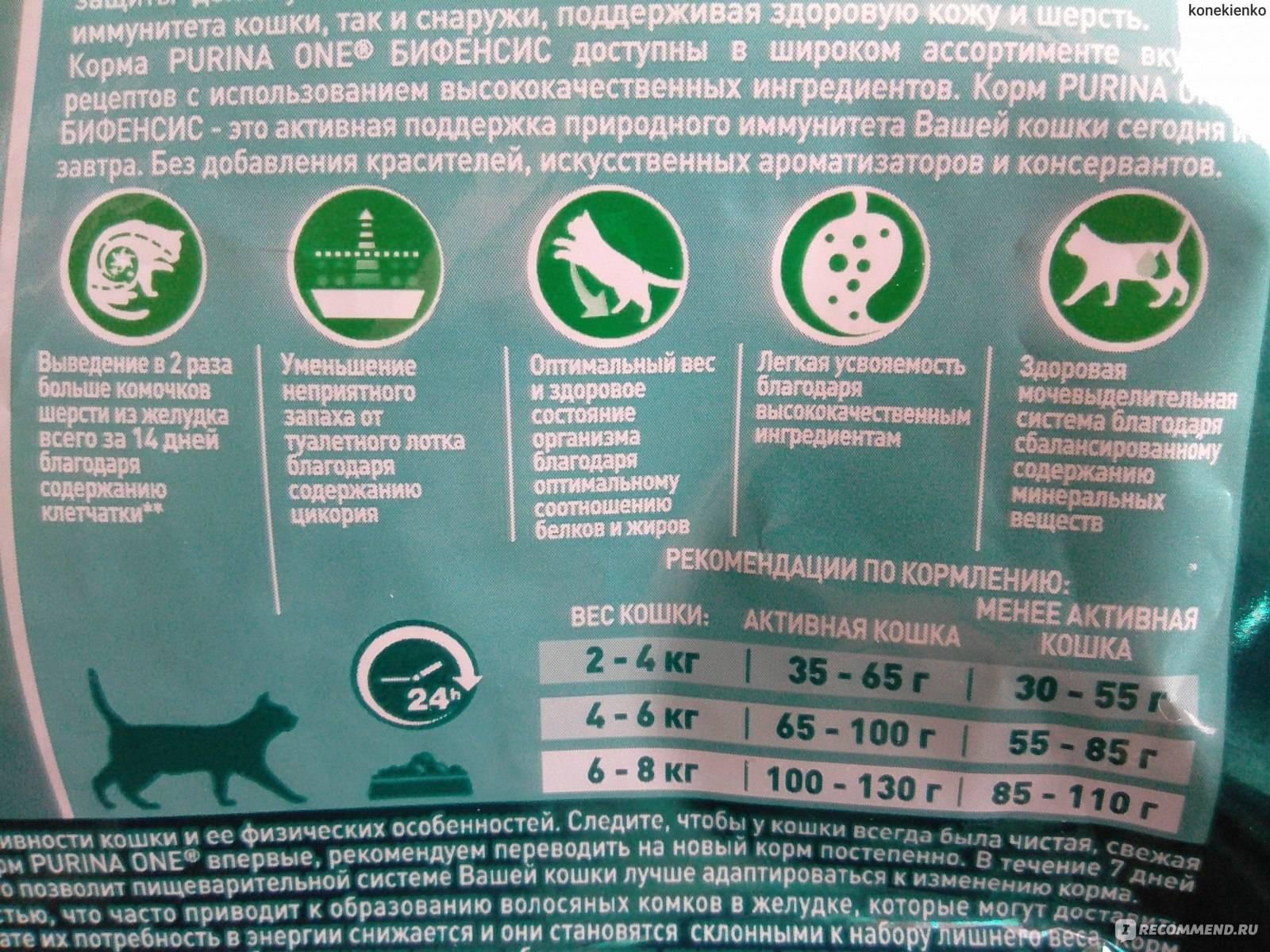 """Кормление при мочекаменной болезни у кошек. ветеринарная клиника """"зоостатус"""""""