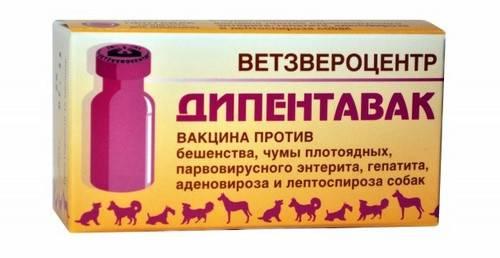 Нобивак puppy dp, вакцина для щенков
